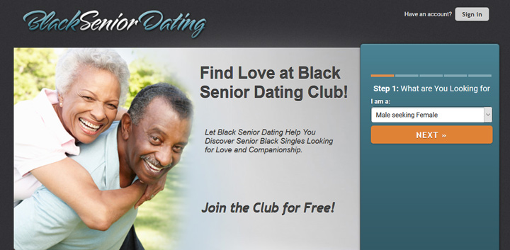 Black Senior Dating printscreen homepage