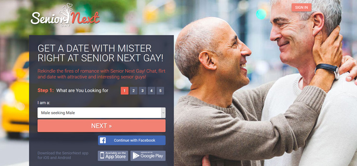 Gay Senior Next printscreen homepage