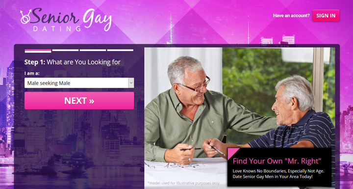 Senior Gay Dating printscreen homepage